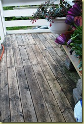 St Hans Anna cleaned the Deck