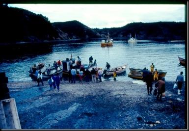 Puerto Montt - fangsten skal i land