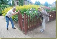 OBG1 - Pierre tar bilde av Claudie in botaniske hage med erteblomster - 2