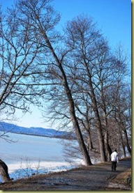B Hvervenbukta - nakne trær