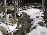 Fresh snow, Valle Frances