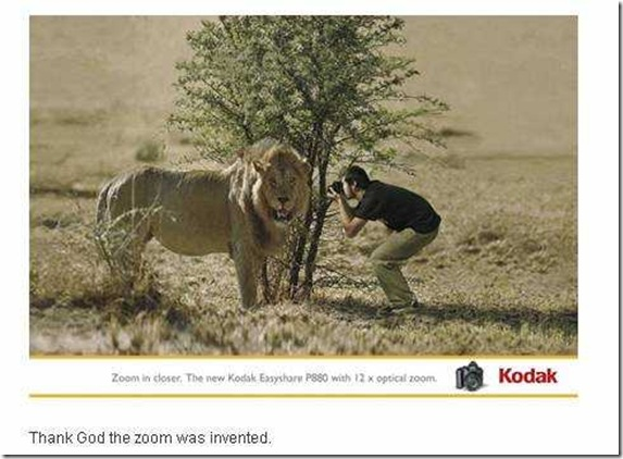 kodak_lion