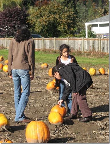Scholz Pumpkin Farm 094