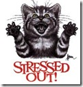 stressoutkitty