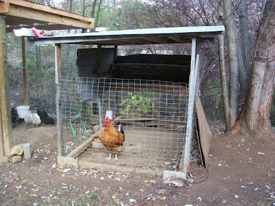 Small Coop