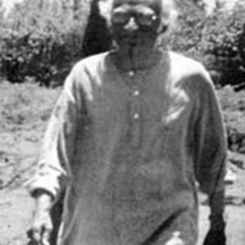 கன்னிமை  --கி .இராஜநாராயணன் சிறுகதை