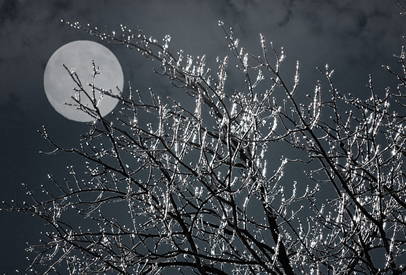 moon following me