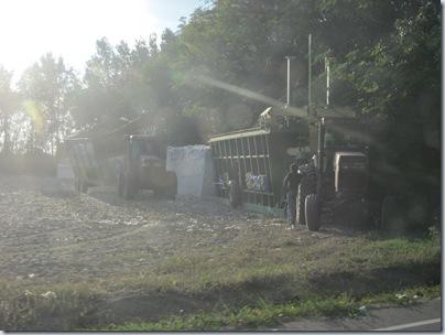 October farm 2010 048