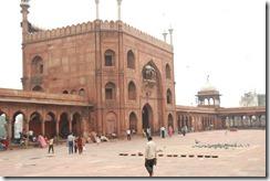 India 2010 - Delhi -  Jamma Masjid  , 13 de septiembre   44
