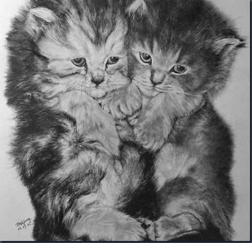 Baby_Cat_by_paullung