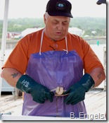 Scallop shucker on the Lunenburg wharf
