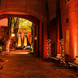 Stienman Park by Troy Snider - City,  Street & Park  City Parks ( water, lights, red, park, brick, people, city )