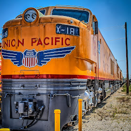 Union Pacific by Ron Meyers - Transportation Trains