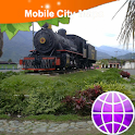 Ibague Street Map icon