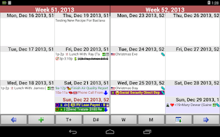 Screenshot of Pimlical Advanced Calendar/PIM