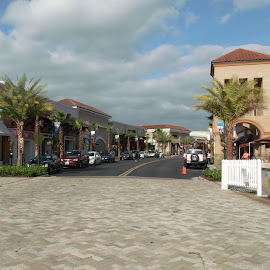 My Town 2 Wesley Chapel, Florida by Cheryl Beaudoin - City,  Street & Park  Markets & Shops