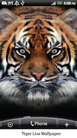 Screenshot of Tiger Live Wallpaper