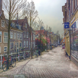 Amsterdam! by Wendy Greenhut - City,  Street & Park  Street Scenes