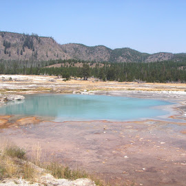 hot spring by Holly Herrmann - Landscapes Travel ( yellowstone national park )