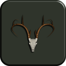 Buck Skull Live Wallpaper