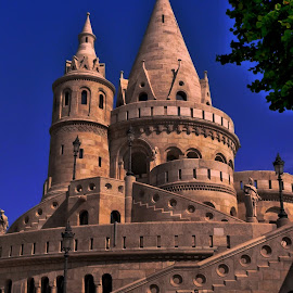 The Fisherman's Bastion by Pip Hoeta - Buildings & Architecture Public & Historical ( hungary, fisherman'sbastion )