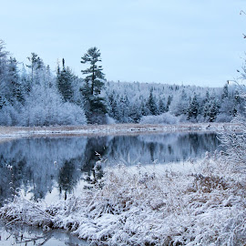 winter blues by Shelby Taylor - Novices Only Landscapes ( winter, waterscape, snow, landscape, pond,  )