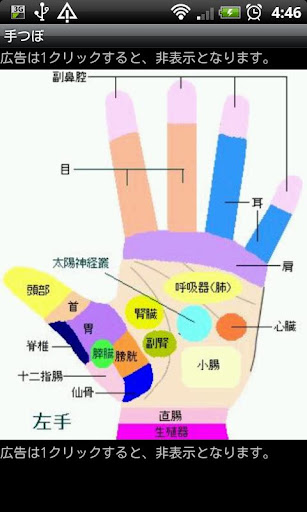 手つぼ(反射図)