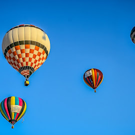 Albuquerque Fiesta! by Ron Meyers - Transportation Other