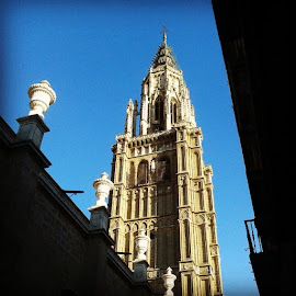 #toledo by Vladimir Nikitin - Instagram & Mobile Android ( Wedding, Weddings, Marriage )