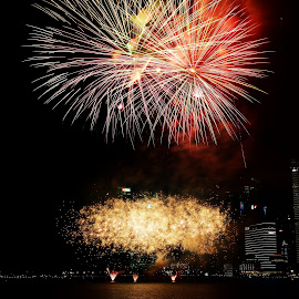 Fireworks by Koh Chip Whye - Abstract Fire & Fireworks ( firework )