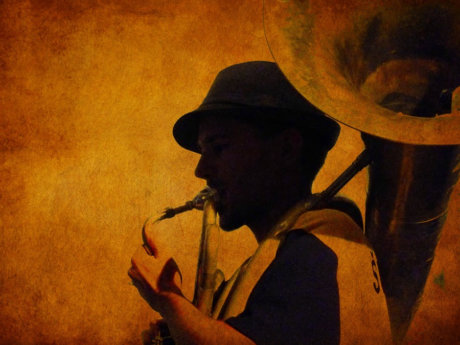 the sousaphone player by Brut Carniollus - People Musicians & Entertainers ( silhouete, air, musician, portrait, silhouette,  )