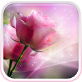 Pink Roses Live Wallpaper APK for Bluestacks