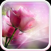 App Pink Roses Live Wallpaper APK for Windows Phone