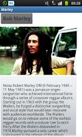 Screenshot of Great Musicians
