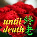 Until Death icon