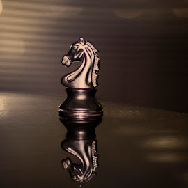 The Knight... by Pankaj Kumar - Sports & Fitness Other Sports ( indoor sports, chess, sports, game, knight,  )