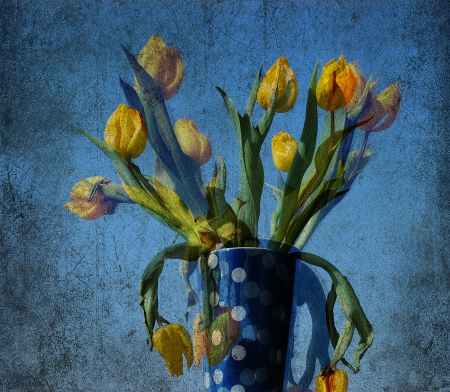 yellow tulips with polk dots by Brut Carniollus - Digital Art Things ( polka dots, digital collage, tulips, yellow, floral, flower, bouquet, , colorful, mood factory, vibrant, happiness, January, moods, emotions, inspiration, Flowers, Flower Arrangements )