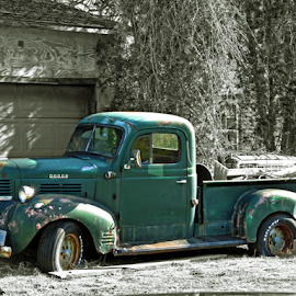 by Donna Nicklas - Transportation Automobiles (  )
