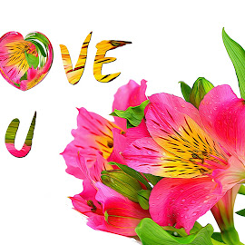 Love U by Dipali S - Typography Captioned Photos ( optical, optics, illustration, motivation, type, decor, inspiration, calligraphy, card, place, template, element, text, creative, letter, font, art, label, calligraphic, sign, frame, poster, word, typography, letters, headline, graphic, ornate, decorative, captioned, title, words, quote, inscription, classic, note, banner, typographic, abstract, icon, decoration, vintage, advertisement, photo, message, motivational, typo, background, artistic, design )