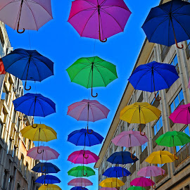 Color Spotted Street by Marco Bertamé - City,  Street & Park  Street Scenes ( hanging, sky, umbrellas, colorful, blue, pedestrian zone, colors, outdoor, summer, festival, exhibition, city,  )