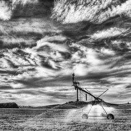 padlock ranch  by Robert Perkins - Landscapes Prairies, Meadows & Fields ( black and white, d90, wyoming, landscape, nikon,  )