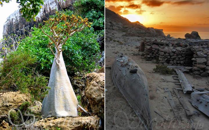 رحلة بالصور لجزيرة العجائب أو السلام   شاهد ما لم تشاهدة من قبل