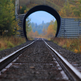 The way south by Darlene Wuenschel - Transportation Railway Tracks ( train tracks, tunnel )