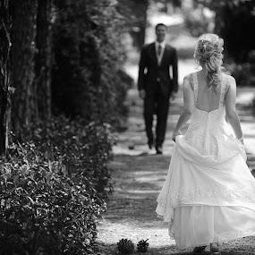 The Journey starts here by Albert Bredenhann - Wedding Bride & Groom