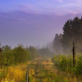 Morning mist by Daniel Sandberg - Landscapes Sunsets & Sunrises ( railway, railroad, sunrise, sunlight, mist )