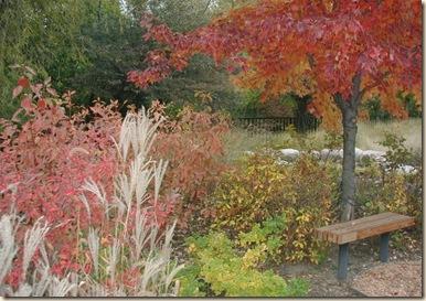 autumn_garden-1024x768