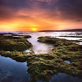 SAWARNA by Vincent Benex - Landscapes Beaches