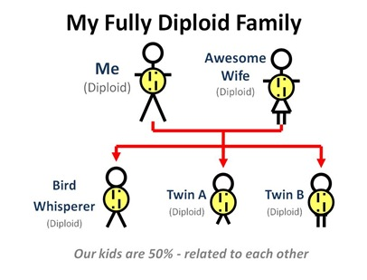 Fully Diploid Family