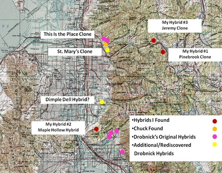 Wasatch Hybrid Map