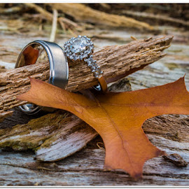 Rings in nature by Wessel Badenhorst - Wedding Details (  )